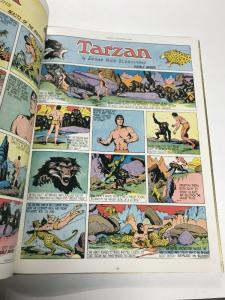 Burne Hogarths Golden Age Of Tarzan 1939-1942 Oversize Hardcover
