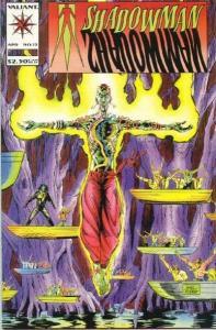 Shadowman (1992 series) #12, NM- (Stock photo)