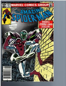 The Amazing Spider-Man #231 (1982)