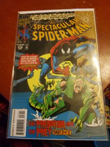The Spectacular Spider-Man #216 (1994)