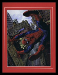 Amazing Spider-Man Framed 11x14 Marvel Masterpieces Poster Display