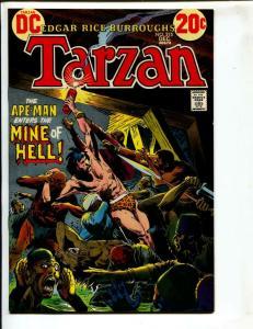Tarzan-#215-1972-DC-BRONZE-AGE-Joe Kubert-NM-