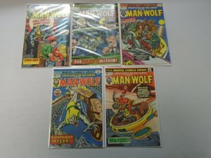 Bronze Age Man-Wolf Comic Lot 9 Different Books Average 6.0 FN (1974-1979)