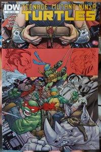 Teenage Mutant Ninja Turtles #49 (2015)