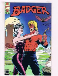 Badger #43 VF First Comics Comic Book Baron DE25