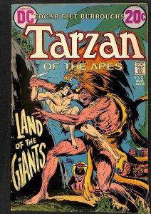 Tarzan (1972) #211