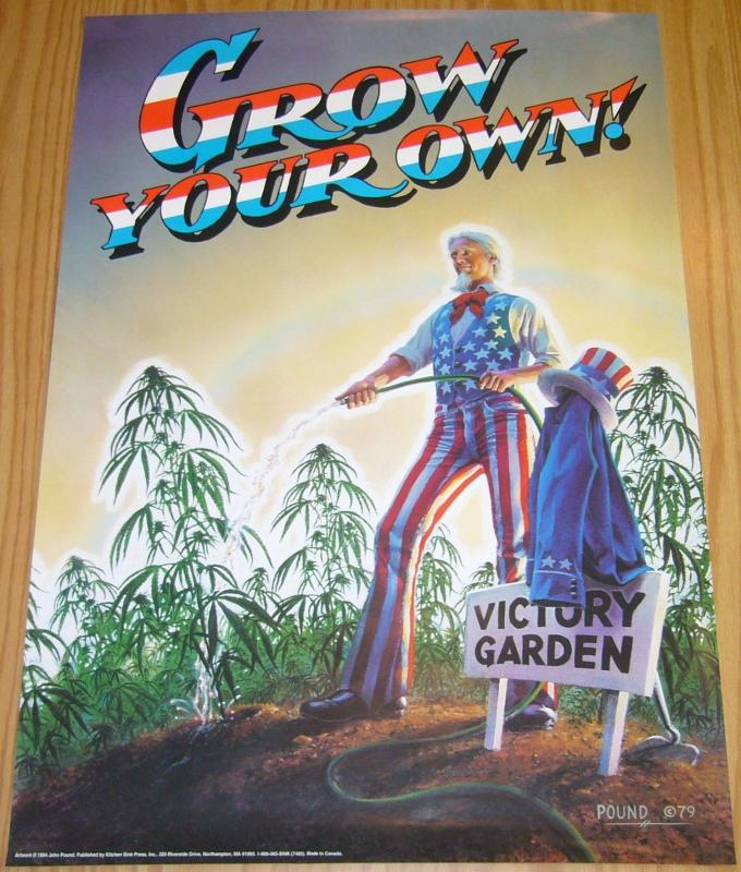 Grow Your Own vintage poster - john pound - uncle sam dope/marijuana underground