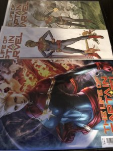 The Life of Captain Marvel #1-3