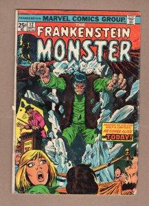 The Frankenstein Monster #12 (1974)