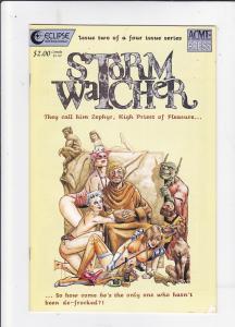 Stormwatcher #2