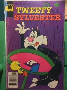 Tweety and Sylvester #71
