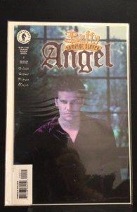 Buffy the vampire slayer angel