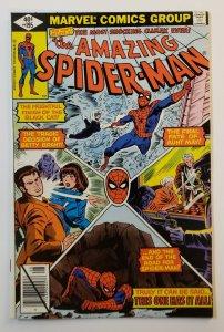 Amazing Spider-Man #195 Marvel Comics 1979 2nd App. Black Cat VF