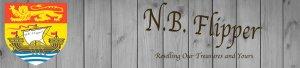 NBFLIPPER
