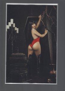 Vampirella #17 Incentive Copy