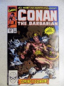 CONAN THE BARBARIAN # 232