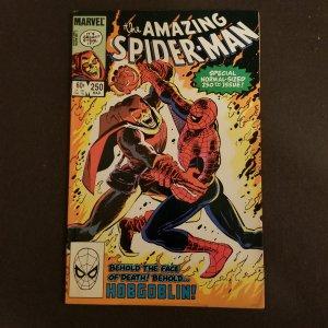 Amazing Spider-Man 250
