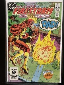 The Fury of Firestorm #16 (1983)