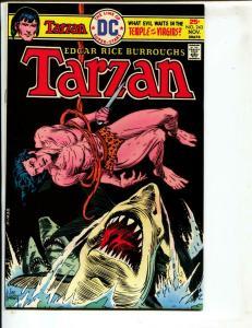Tarzan-#243-1975-DC-BRONZE-AGE-Joe Kubert-NM-