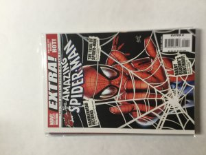 The Amazing Spider-Man:  EXTRA! #1 (2008)