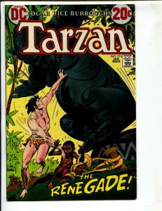 Tarzan-#216-1973-DC-BRONZE-AGE-Joe Kubert-NM-
