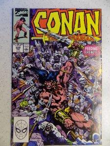 CONAN THE BARBARIAN # 229