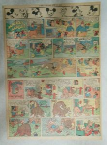 Mickey Mouse Sunday Page by Walt Disney from 1/28/1945 Tabloid Page Size