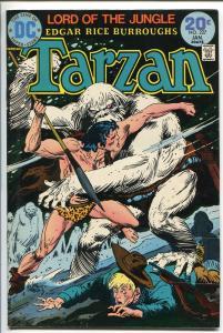 TARZAN #227 1974-DC-EDGAR RICE BURROUGHS-JOE KUBERT JUNGLE ART-vf