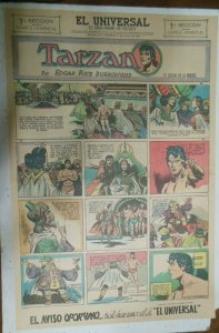 Tarzan Sunday Page #639 Burne Hogarth from 6/6/1943 in Spanish! Full Page Size