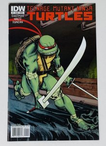 TEENAGE MUTANT NINJA TURTLES #1 COVER C (IDW)