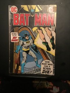 Batman #246 (1972) affordable grade robin issue key! VG+ Wow!