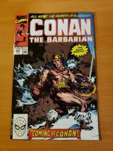 Conan The Barbarian #232 Direct Market Edition ~ NEAR MINT NM ~ 1990 Marvel