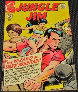 Jungle Jim #22 (1969)