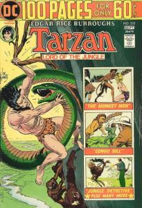 Tarzan (DC) #232 FN; DC | save on shipping - details inside