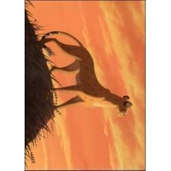 1994 Skybox The Lion King ANIMALS AND BIRDS STIR #02