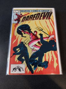 Daredevil: Coleccionable Dan Defensor #12