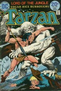 Tarzan (1972 series) #227, VF- (Stock photo)