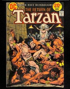 Tarzan (1972) #222