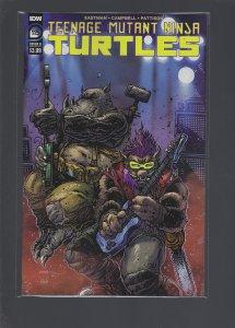 Teenage Mutant Ninja Turtles #115 Cover B