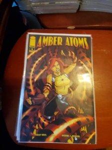 Amber Atoms #4 (2009)