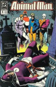 Animal Man #16 VF/NM; DC | save on shipping - details inside