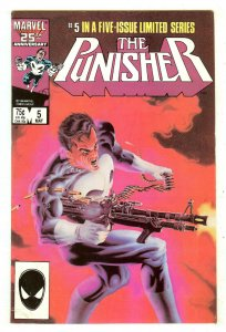 Punisher 5   Limited Series
