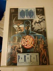 Legends of the Dark Knight #13 (1990)