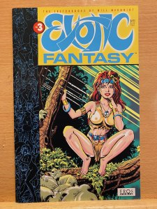 Exotic Fantasy #3 Eros Comix (1993) Excellent Condition
