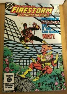 Fury of Firestorm #28