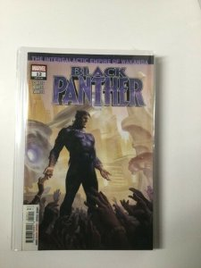 Black Panther #12 (2019) HPA