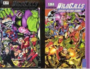WILDCATS SOURCEBOOK (1993 IM) 1-2  COMPLETE SET!