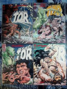 TOR #1-4 Complete Mini Joe Kubert Marvel Epic Comics 1993