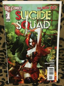 SUICIDE SQUAD: THE NEW 52 - DC COMICS - 18 Issues #0-#16 - 2011-13 VF or Better