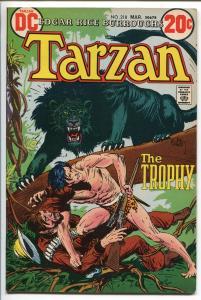 TARZAN #218 1973-DC-EDGAR RICE BURROUGHS-JOE KUBERT JUNGLE ART-vf